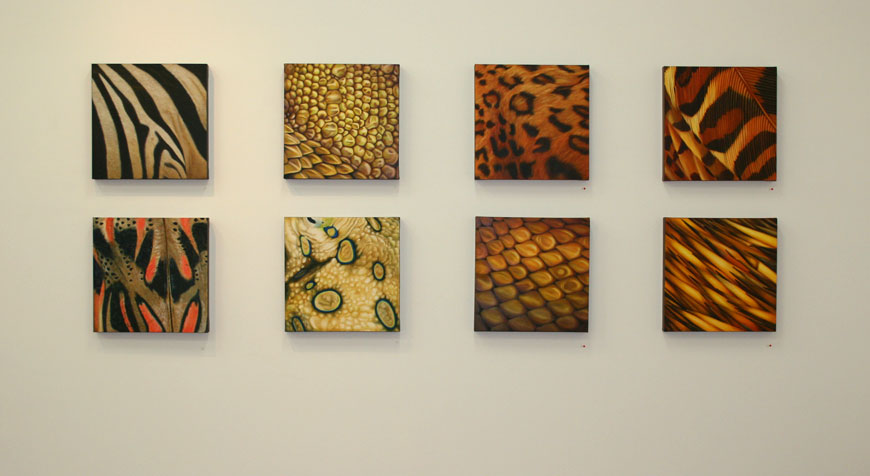feathers scales and skin paintings installation