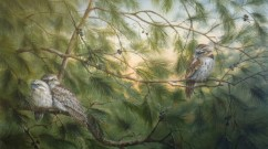 Tawny-Frogmouths2