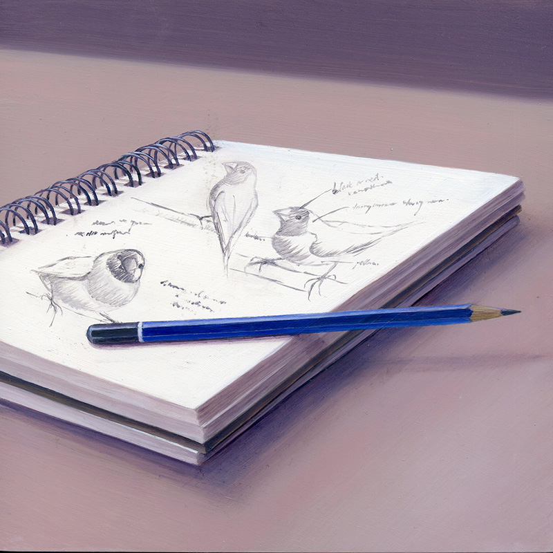 sketch book with pencil and bird sketches