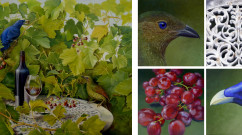Bowerbirds and Grapes Suite