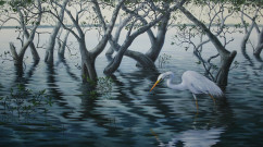 Great Egret and Mangroves     acrylic on canvas      41 x 66cm